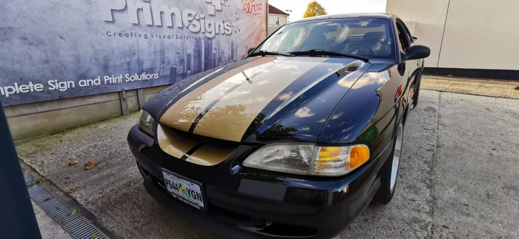 Gold Mustang Stripes Front
